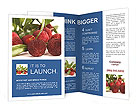 0000064097 Brochure Templates