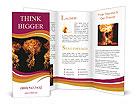 0000064210 Brochure Templates
