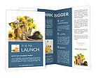 0000064271 Brochure Templates