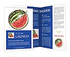 0000064387 Brochure Templates