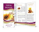 0000064406 Brochure Templates