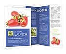 0000064701 Brochure Templates