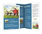 0000065010 Brochure Templates