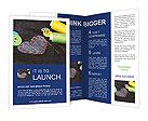 0000065264 Brochure Templates