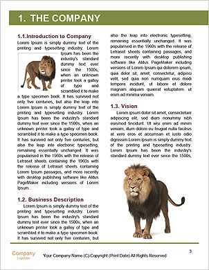 0000065266 Word Template - Page 3