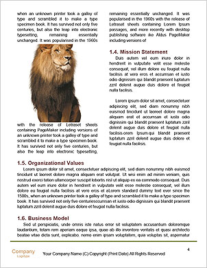 0000065266 Word Template - Page 4