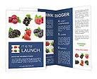 0000065960 Brochure Templates