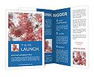 0000065964 Brochure Templates