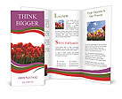 0000065968 Brochure Templates
