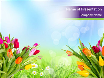 Pleasant Meadow with Tulips PowerPoint Template