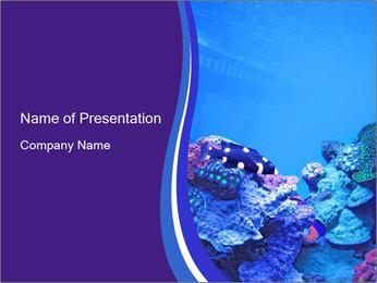 Nice Aquarium PowerPoint Template