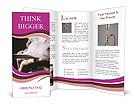 0000067180 Brochure Templates