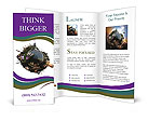 0000067403 Brochure Templates