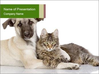 Скачать шаблоны презентаций powerpoint о дружбе