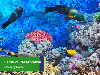Beautiful Aquarium PowerPoint Template