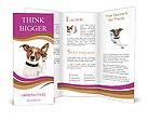 0000067860 Brochure Templates