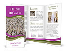 0000068435 Brochure Templates
