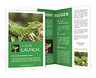 0000068555 Brochure Templates