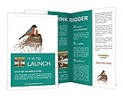 0000068622 Brochure Templates