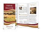 0000068677 Brochure Templates