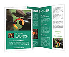 0000068878 Brochure Templates