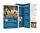 0000068971 Brochure Templates
