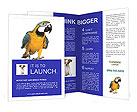 0000069109 Brochure Templates