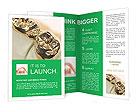 0000069267 Brochure Templates