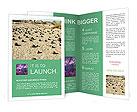 0000069349 Brochure Templates