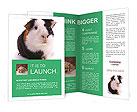 0000069366 Brochure Templates