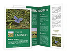 0000069385 Brochure Templates