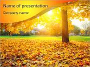 Autumn Park PowerPoint Templates