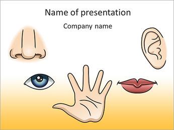 Senses Organs PowerPoint Template