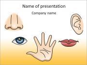 Senses Organs PowerPoint Templates