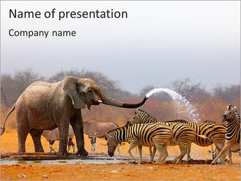 Wild Animals PowerPoint Template