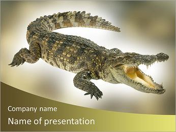 Crocodile PowerPoint Template