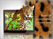 TV PowerPoint Templates