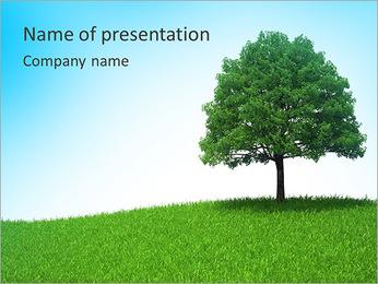Un seul arbre Modèles des présentations  PowerPoint