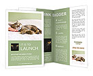Sleeping Kitty Brochure Templates