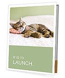 Sleeping Kitty Presentation Folder