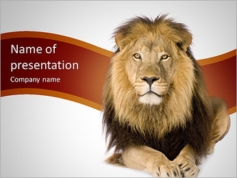 Lion PowerPoint Template