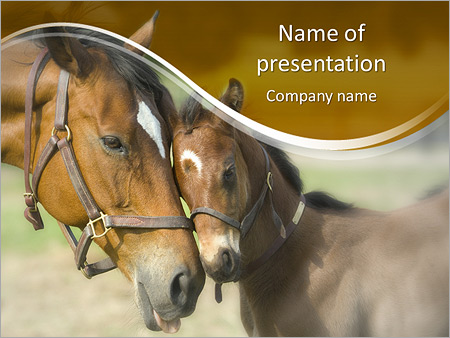 Horse With Foal Powerpoint Template Backgrounds Google Slides