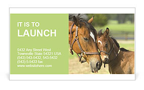 Horse With Foal Business Card Template