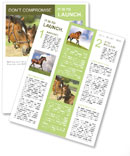 Horse With Foal Newsletter Template