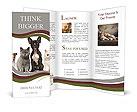 Home Pet Brochure Templates