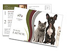 Home Pet Postcard Template