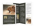 Lioness Brochure Templates