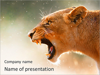 Lioness PowerPoint Template