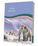 Mammoth Presentation Folder