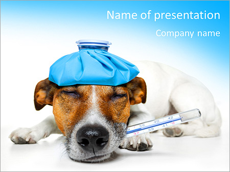ill dog powerpoint template & backgrounds id 0000007333, Modern powerpoint